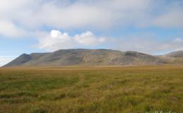 Beringia tundra