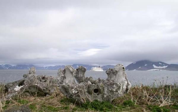 Памятники природы и истории