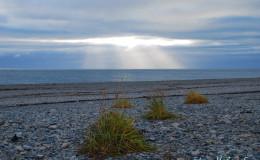 Beringia marine landscape