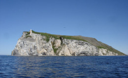 Nuniangan island. Bird rookery