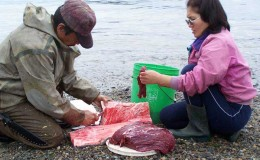 Whale skin and meet is a favourite food of Eskimo