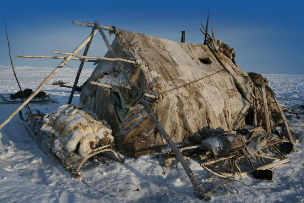 Musey Beringii